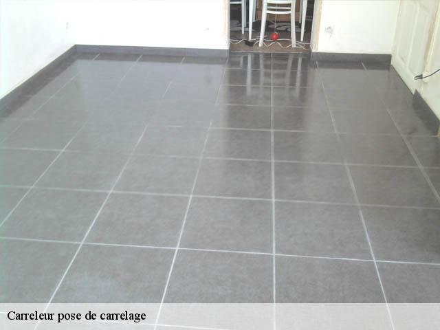 Pose De Carrelage Carreleur 95 Val D Oise Tel 01 85 53 07 50